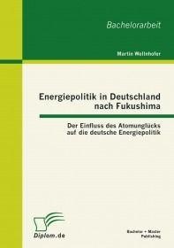 Energiepolitik in Deutschland nach Fukushima: Der Einfluss des Atomunglücks auf die deutsche Energie