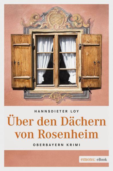 Über den Dächern von Rosenheim