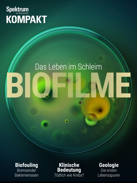 Spektrum Kompakt - Biofilme