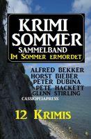 Krimi Sommer Sammelband 12 Krimis - Im Sommer ermordet