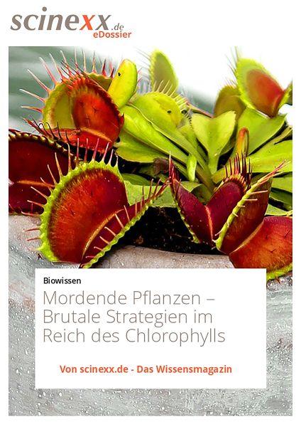 Mordende Pflanzen