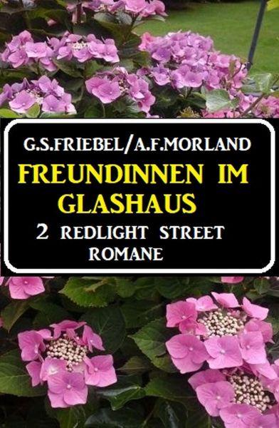 Freundinnen im Glashaus: 2 Redlight Street Romane