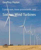 Sixteen Wind Turbines