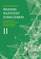 Maximal nilpotent subalgebras II: A correspondence theorem within solvable associative algebras. Wit