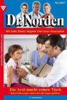 Dr. Norden 1017 - Arztroman