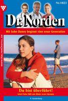 Dr. Norden 1023 - Arztroman