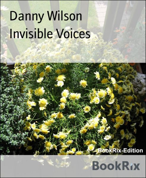 Invisible Voices