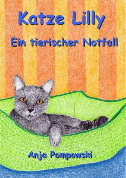 Katze Lilly – Ein tierischer Notfall