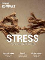Spektrum Kompakt - Stress