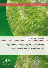 Hydrothermale Vergasung von Algenbiomasse: Sensitivitätsanalyse der Methangestehungskosten