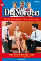 Dr. Norden 1013 - Arztroman