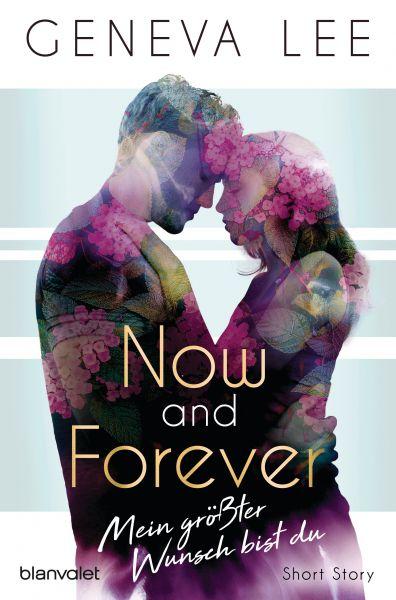 Now and Forever - Mein größter Wunsch bist du
