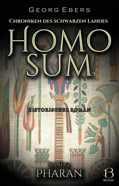 Homo sum. Historischer Roman. Band 2