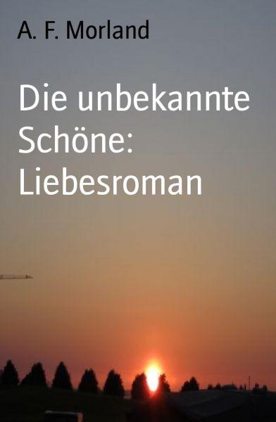 Die unbekannte Schöne: Liebesroman