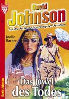 David Johnson 2 - Abenteuerroman