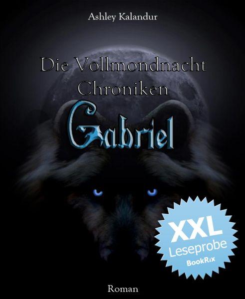 Die Vollmondnacht Chroniken - Gabriel XXL - Leseprobe