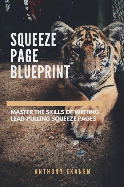 Squeeze Page Blueprint