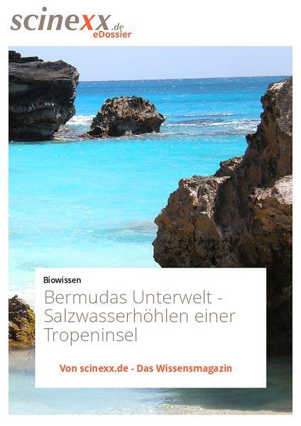 Bermudas Unterwelt