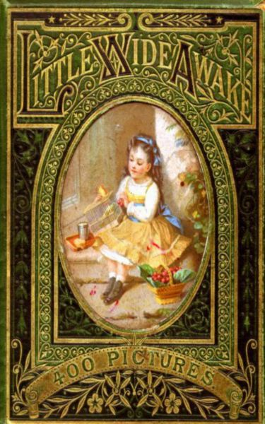 Little Wideawake - A story book for little children
