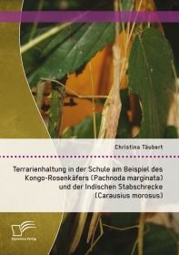 Terrarienhaltung in der Schule am Beispiel des Kongo-Rosenkäfers (Pachnoda marginata) und der Indisc