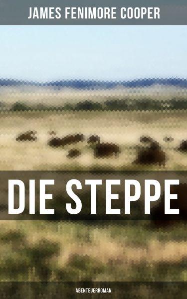 Die Steppe: Abenteuerroman