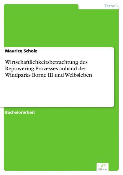 Wirtschaftlichkeitsbetrachtung des Repowering-Prozesses anhand der Windparks Borne III und Welbslebe