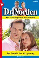 Dr. Norden 623 - Arztroman