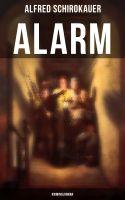 Alarm: Kriminalroman