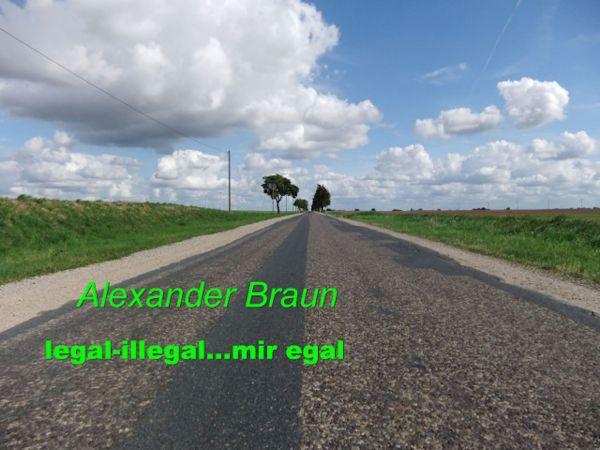Legal - illegal... Mir egal