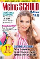 Meine Schuld 12 - Romanzeitschrift