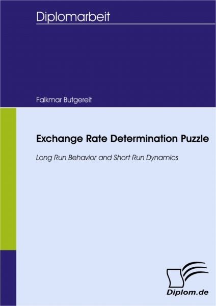 Exchange Rate Determination Puzzle - Long Run Behavior and Short Run Dynamics