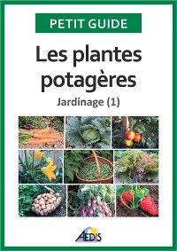 Les plantes potagères