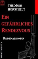 Ein gefährliches Rendezvous: Kriminalroman